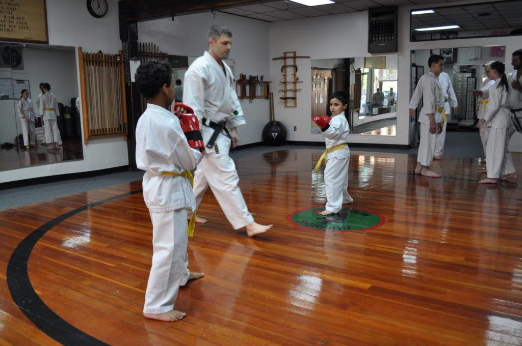 fightinig stances